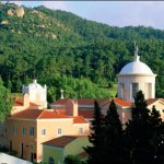 New Graduate Global Program in Linho, Portugal